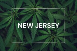 How to Open a Marijuana Dispensary in New Jersey