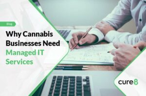 Why Cannabis Businesses Need Managed IT Services-01